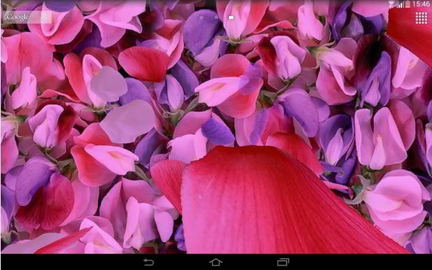 Petals 3d