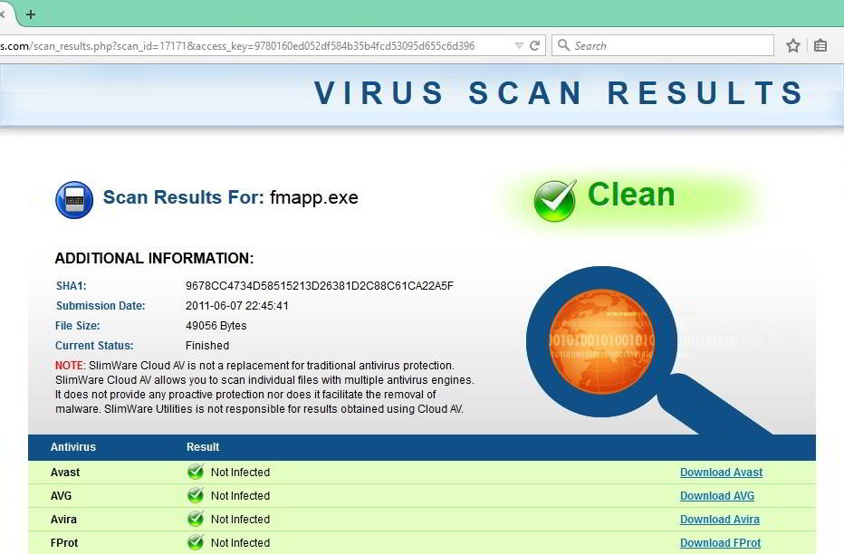 virus scan results