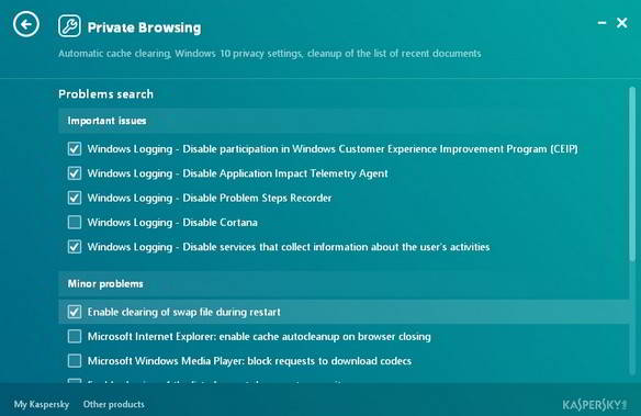 Kaspersky cleaner private browsing