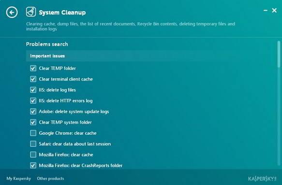 Kaspersky system cleanup