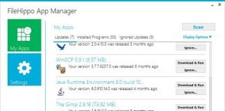 file hippo update manager